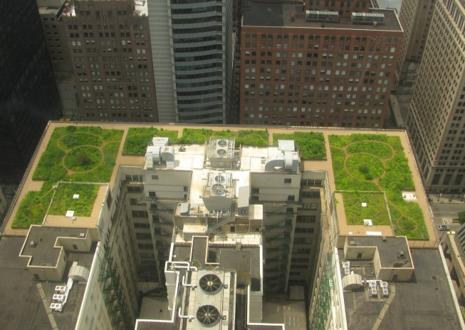 Green roof of City Hall in Chicago Illinois